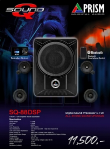 BASS-BOX SQ 88DSP